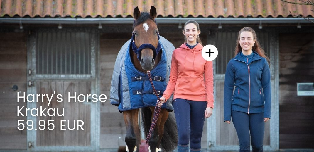 Harry's Horse AW/21
