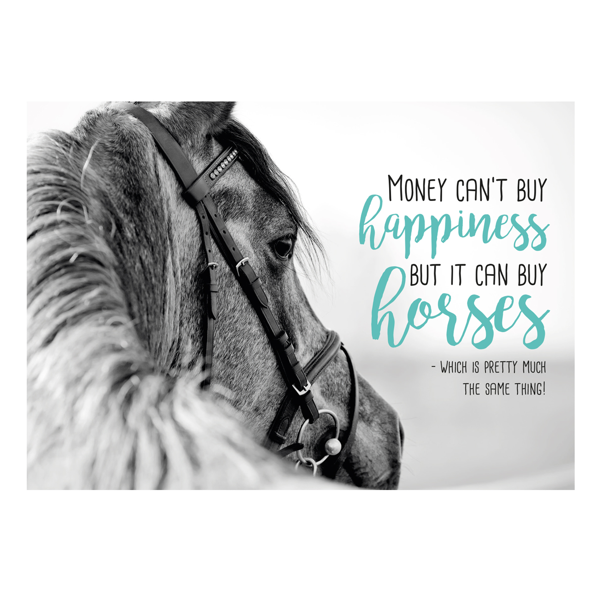 Postkarte Horse Happiness�in Divers